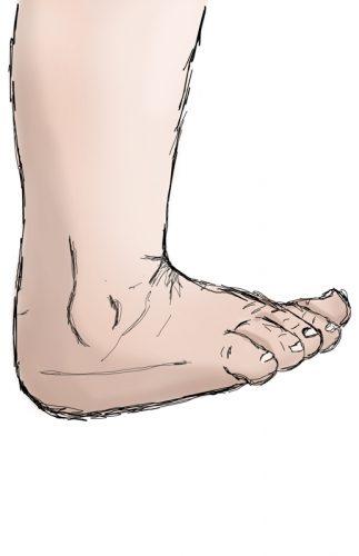 stopa, ruchy stopy, zgięcie grzbietowe, górny staw skokowy, ankle joint, dorsiflexion movement in ankle joint,
