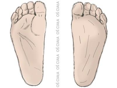 stopy, oś ciała, pozycja neutralna, staw skokowo-łódkowaty, foot, talo-navicular joint
