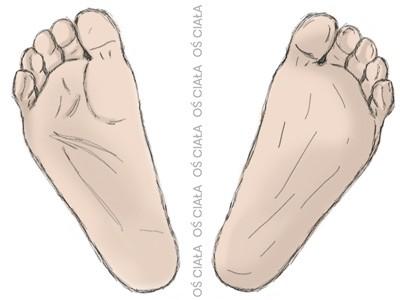 stopy, oś ciała, odwiedzenie, staw skokowo-łódkowaty, foot, talo-navicular joint, abduction of foot, foot abduction