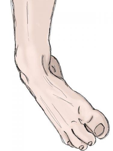 stopa, ruchy stopy, supinacja, ruch trójpłaszczyznowy, supination